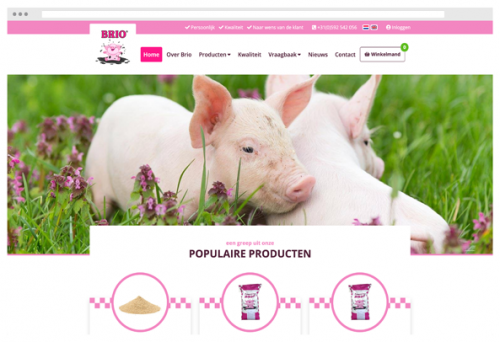 recent project brio biggenvoeding